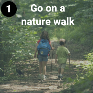 Go on a nature walk